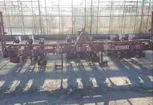 Овощная Сеялка клён