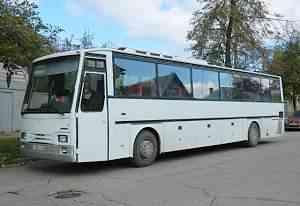 автобус там 260, 49 мест, туалет
