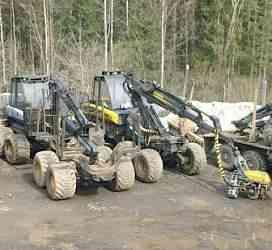 Лесозаготовительный бизнес