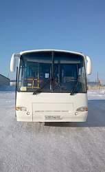 Автобус паз 4230-01 (аврора)